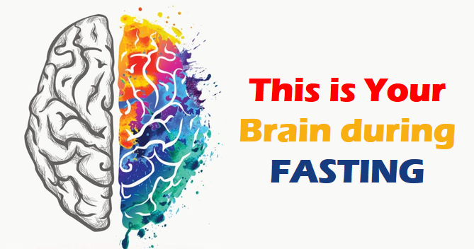fasting-affects-brain.png